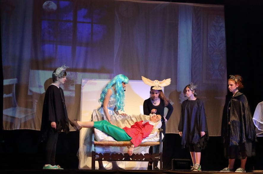 Pinocchio viene curato dalla Fata Turchina